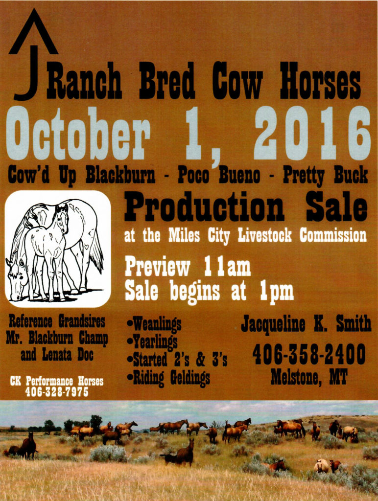Rafter J Horse Sale